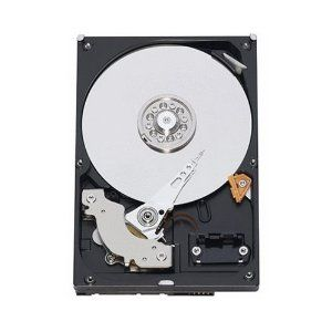 WD3001FYYG WESTERN DIGITAL WD3001FYYG WD RE 3TB 7200RPM 3.5INCH 32MB BUFFER SAS 6.0 GBPS ENTERPRISE HARD DRIVES. NEW WITH MFG WARRANTY.